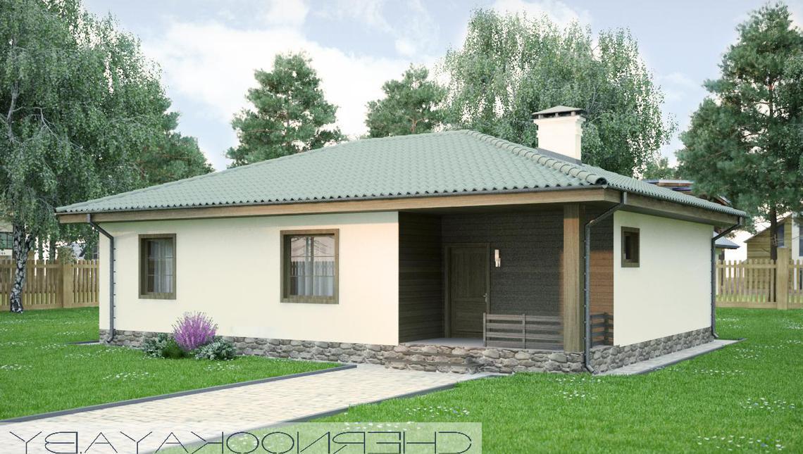 Проект деревенского небольшого дома без гаража