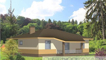 Современный одноэтажный жилой дом с двумя санузлами