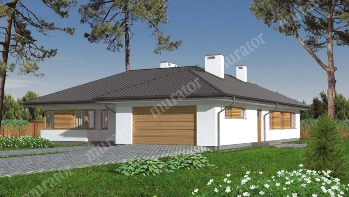 Одноэтажный просторный дом с гаражом