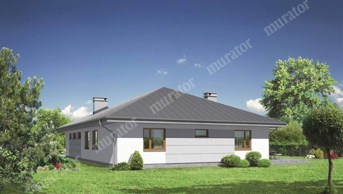 Одноэтажный дом с большой террасой