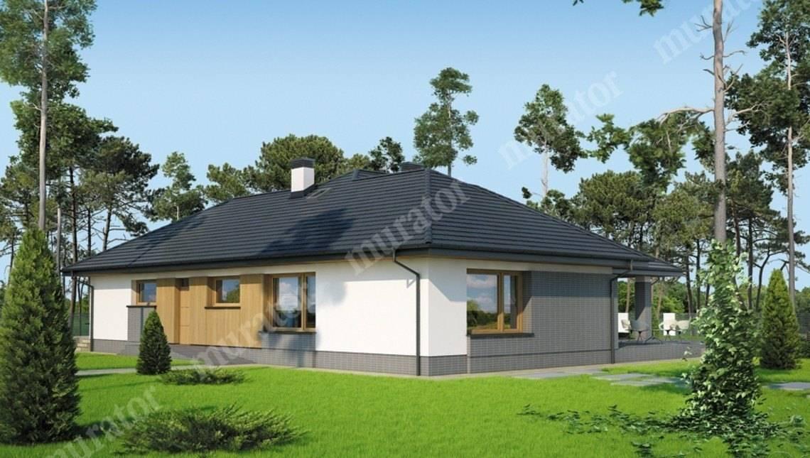 Одноэтажный дом с большой верандой