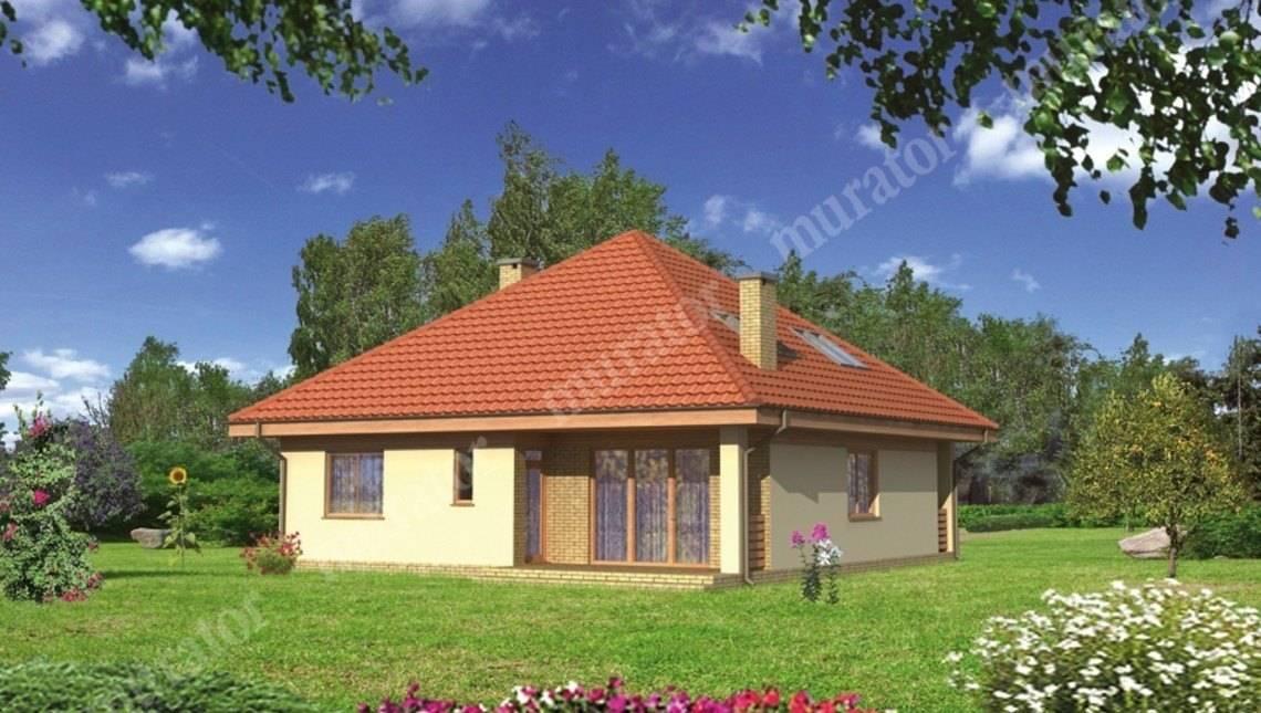 Красивый дом под острой крышей