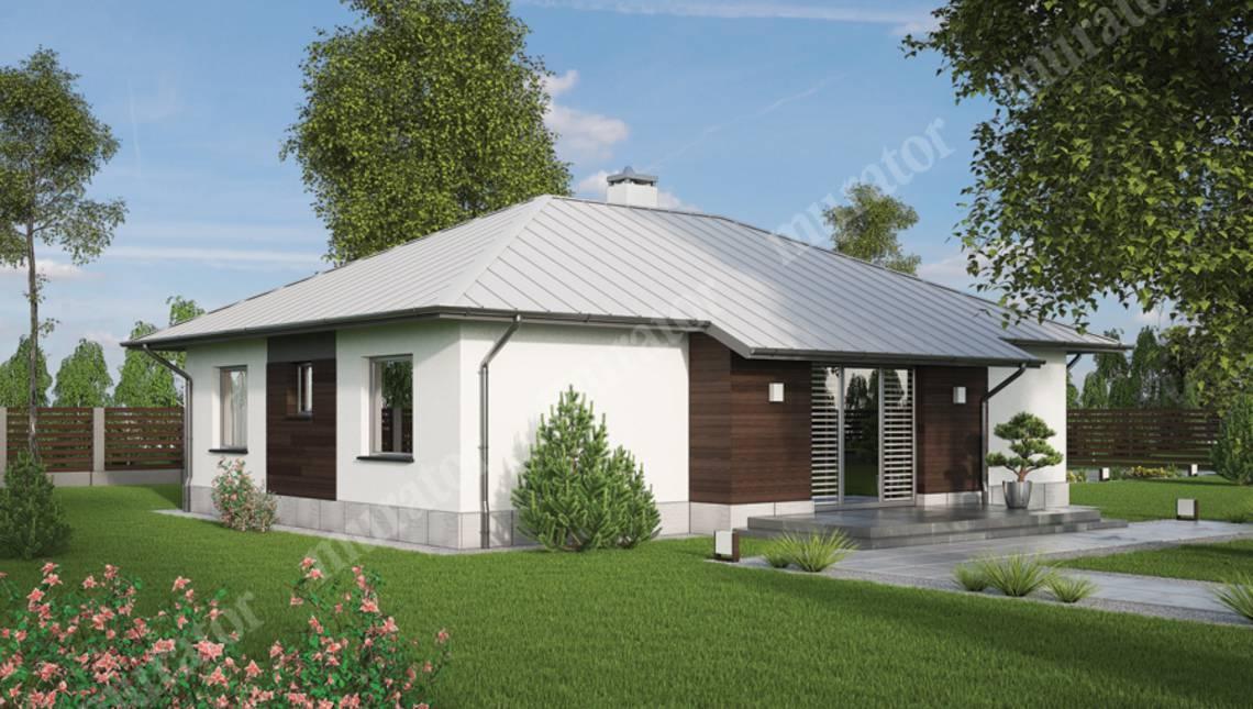 Одноэтажный жилой дом с двумя террасами и тремя спальнями