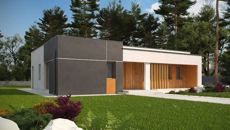 Проект одноэтажного коттеджа модерн